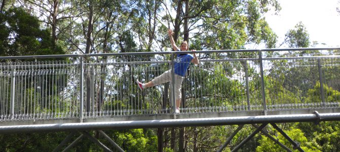 Apollo Bay, Australia Day & Tree Top Walk